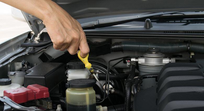 Car Fluid Level Check